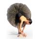 Tutù professionale danza classica C2622 -
