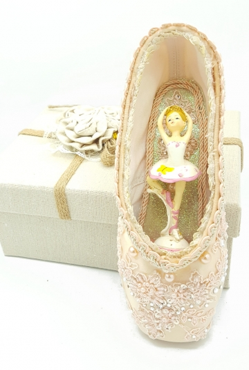Pointe shoes art fourteen